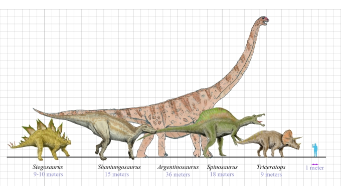 How did dinosaurs grow so big?