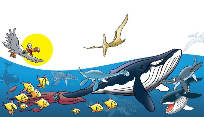 Fish, swim! Birds, fly! - Day 5 - creation com