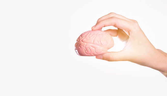 Our brains are getting bigger&mdash;<em>no, smaller &hellip; </em>