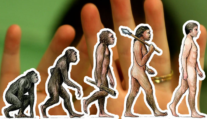Racism—a consequence of evolution?