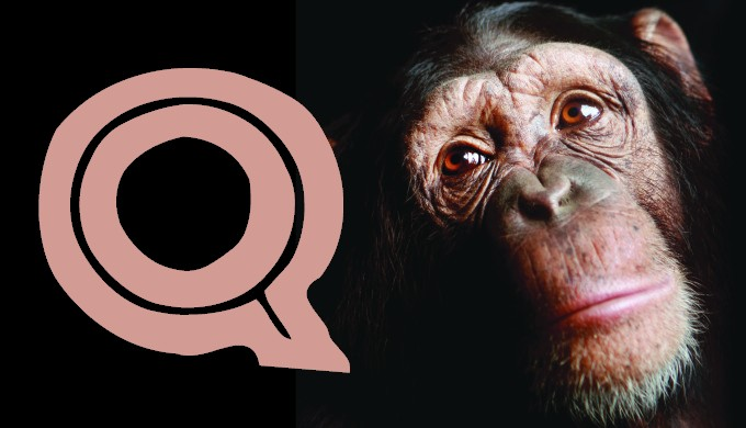 15 Questions for Evolutionists