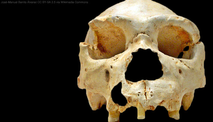 ghostly muscles wrinkled brains heresies and hobbits oxnard charles