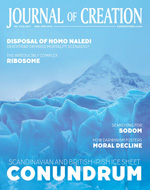 Journal of Creation Volume 31(2) Cover