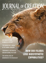 Journal of Creation Volume 31(3) Cover