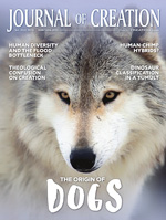 Journal of Creation Volume 32(2) Cover