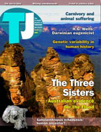 Journal of Creation Volume 18 Issue 3 Cover