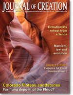 Journal of Creation Volume 23(3) Cover