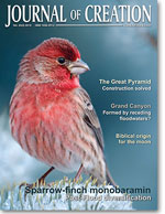 Journal of Creation Volume 24(3) Cover
