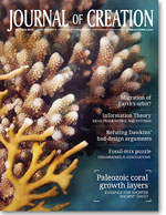 Journal of Creation Volume 26(3) Cover