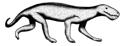 gorgonopsid therapsid