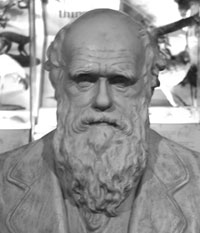 Image of a statue of Darwin.