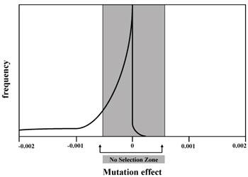 Mutation effect