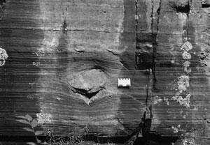 Outsized clast in rhythmites from the Gowganda Formation, Ontario, Canada