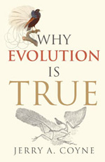 Why evolution need not be true