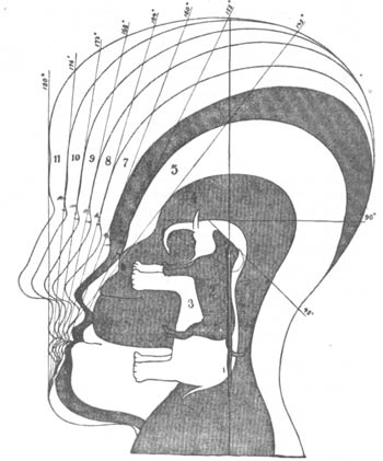 An example of facial angle in a phrenology article