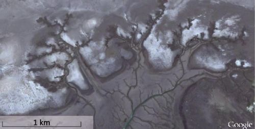Figure 10. Branching type channels on the coast of Argentina have an appearance similar to the branching in the Grand Canyon.