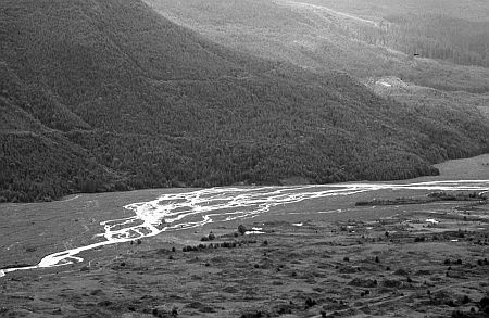 Figure 4. Braided river of the north fork of the Toutle River near Mount St. Helens, Washington, USA.