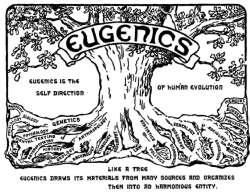 Die Eugenik ist die Selbststeuerung der menschlichen Evolution. Die Eugenik wird aus vielen Quellen gespeist und vereinigt sie alle zu einer harmonischen Ganzheit.