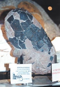 Ένα μεγάλο μεγάλο αυγό δεινόσαυρος ορυκτών