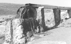 Cape Leewin petrified waterwheel
