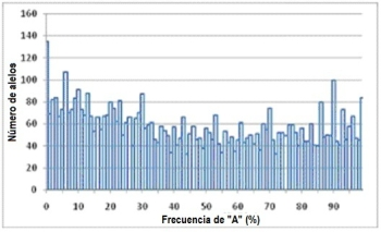 Figure 2a. Histogram frequency