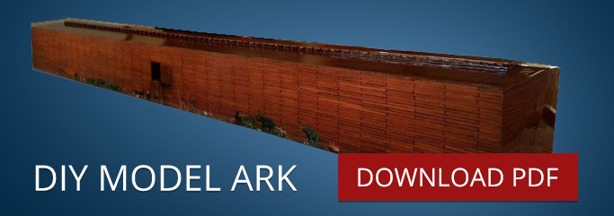 Build a model ark in 3-days!