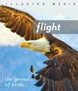 Flight - the genius of birds (Blu-ray)