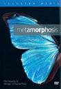 Metamorphosis: The Beauty and Design of Butterflies