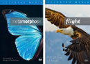 Metamorphosis: Butterflies + Design of Life: Flight DVD pack